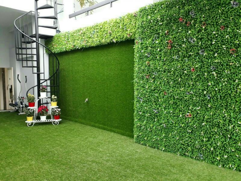 Trang trí vách tường xanh quân Tân Bình