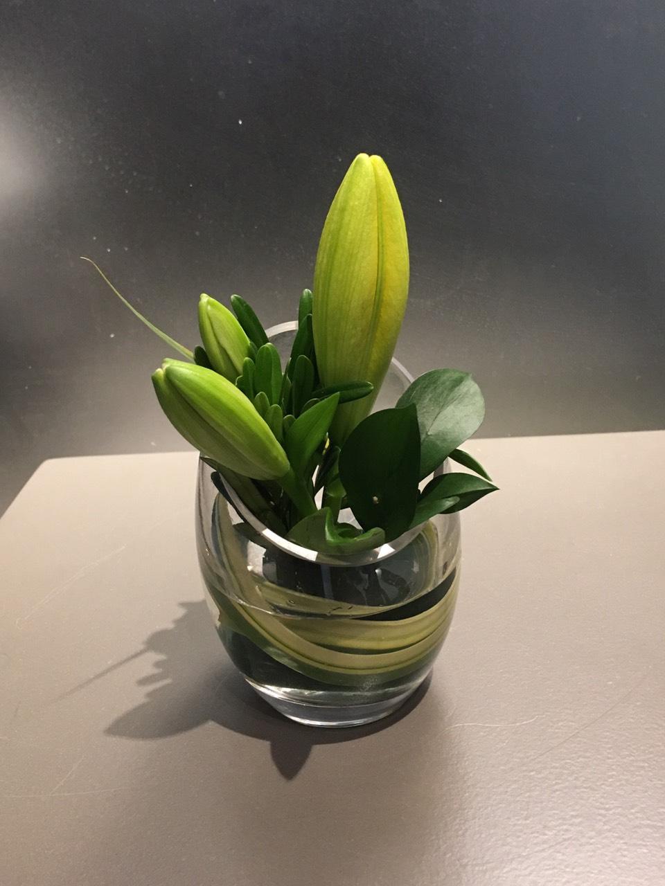 Hoa ly, hoa lily