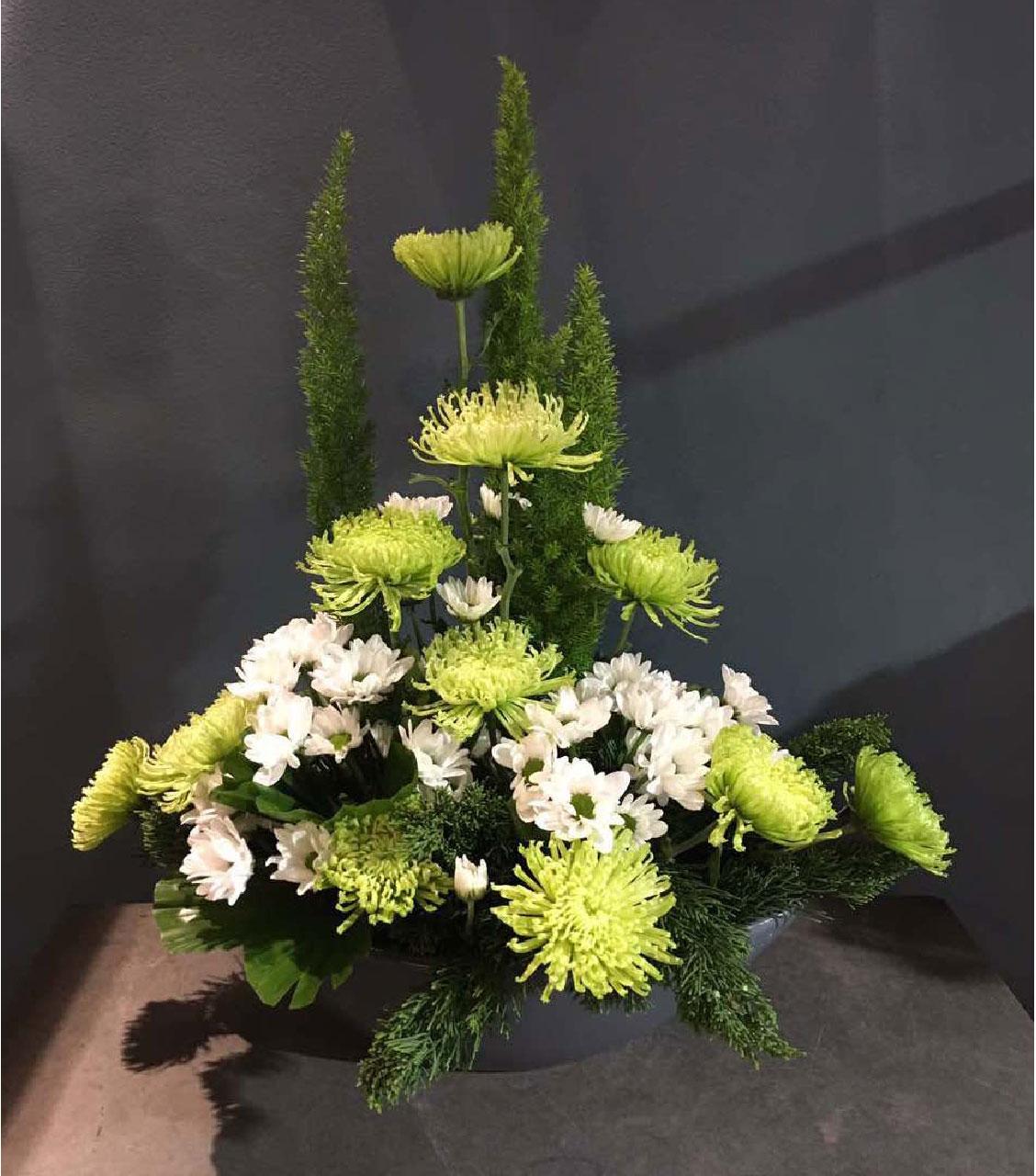Hoa lan, hoa cúc